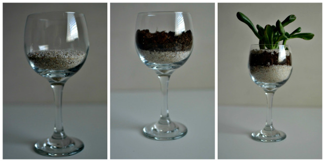 wine-glass-succulent-collage